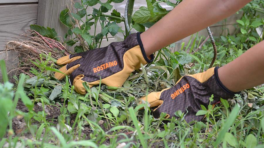 Gants de protection Rostaing Sequoia